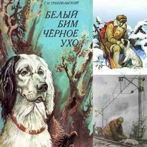"""Обложка и картинки из книги """"Белый Бим Черное Ухо"""""""