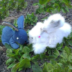 Два кролика: меховой и джинсовый